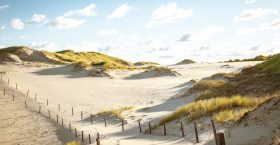 The Moving Dunes